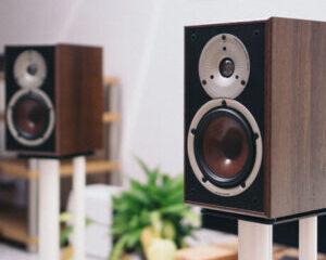 Dali-Spector-2-højttalere-hovedbillede-300x300