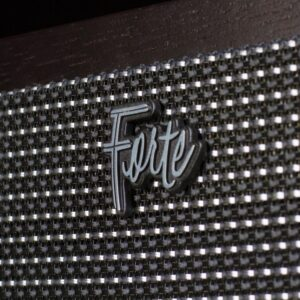 Logo Forte-III-mit