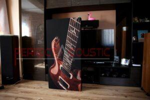 hifi udstillingsrum akustikdesign med akustiske absorbere (3)